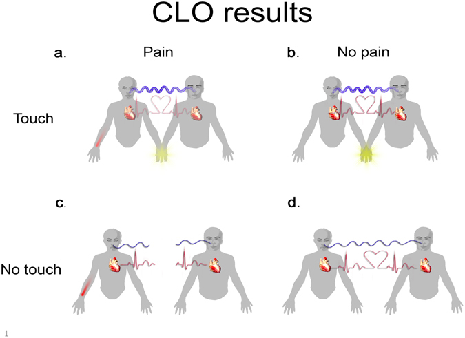 Graphical representation of Coupled Linear Oscillator (CLO) model findings for heart rate and respiration ( image source )