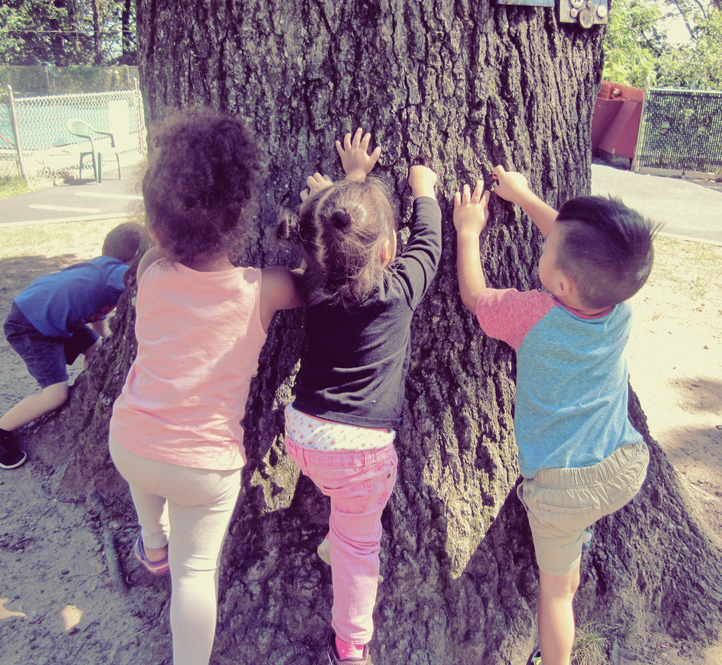 Nature enhances curiosity and creativity to explore and experience life. At Jin-A Child Care Center during outdoor free play.