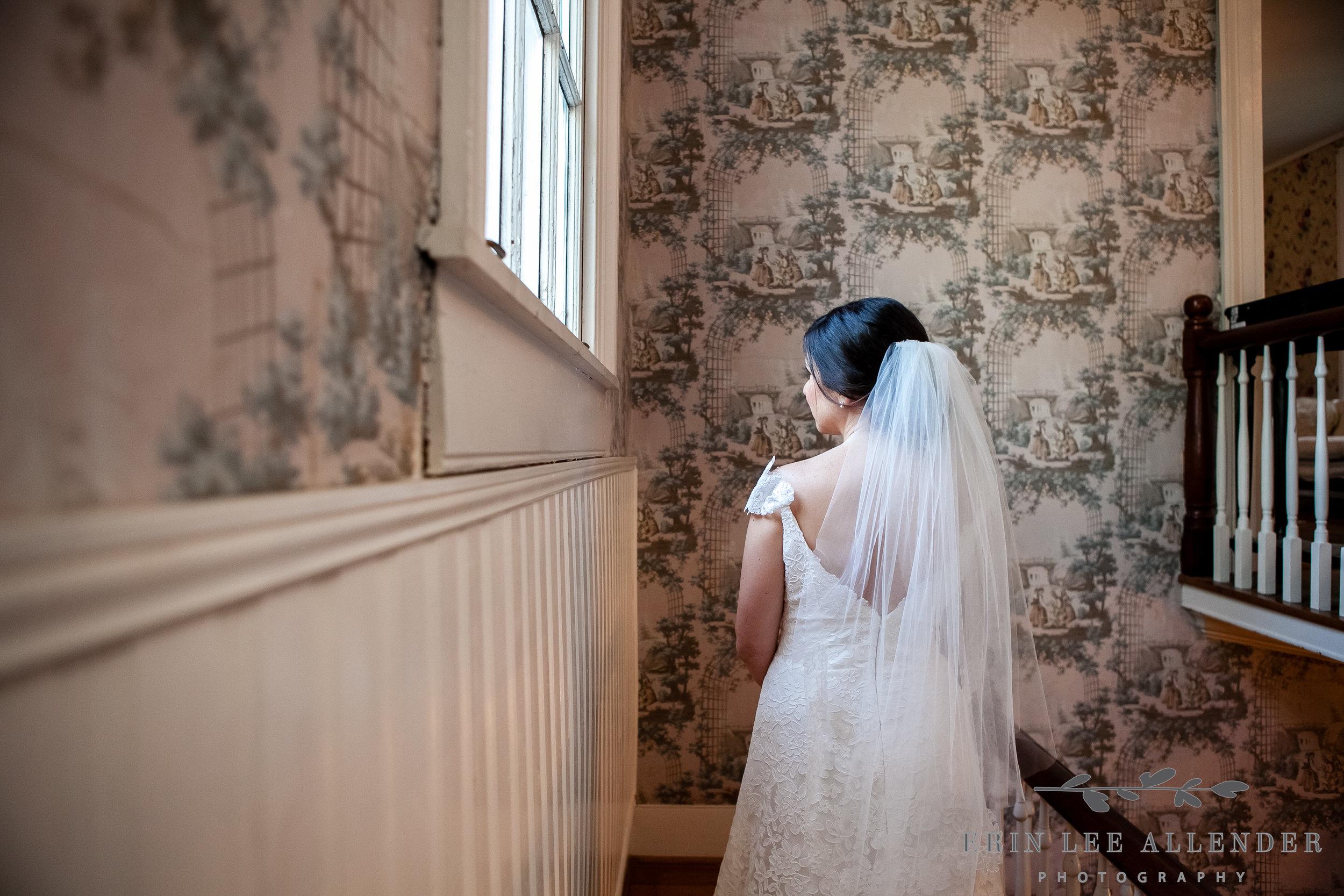 Brides_Veil_Vintage_Wallpaper