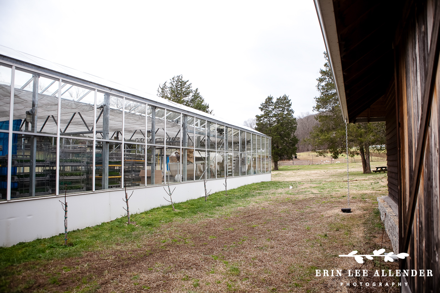 Greenhouse_Wedding