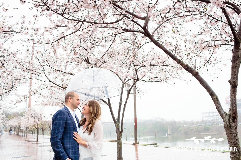 Nashville_Cherry_Blossoms