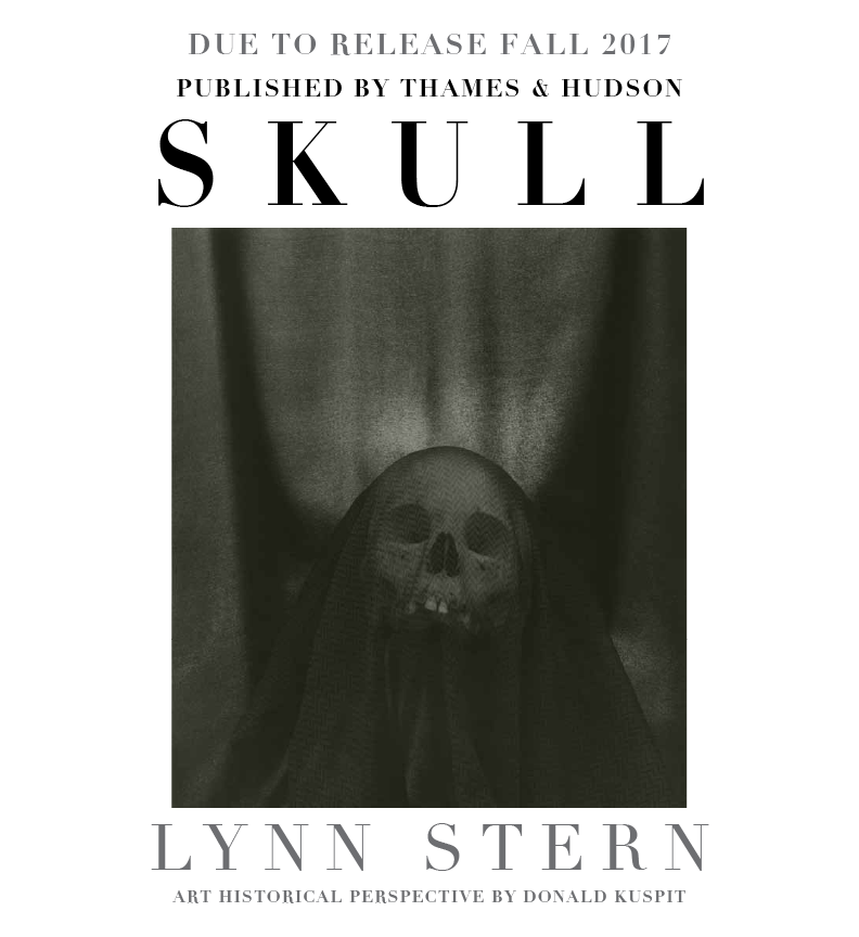 Skull : Lynn Stern , artist monograph. Text by art critic and historian Donald Kuspit. Published in 2017 by Thames & Hudson Inc. Preliminary design mock ups and reproduction rights research services by Allison Wucher, Silverpoint Fine Art.