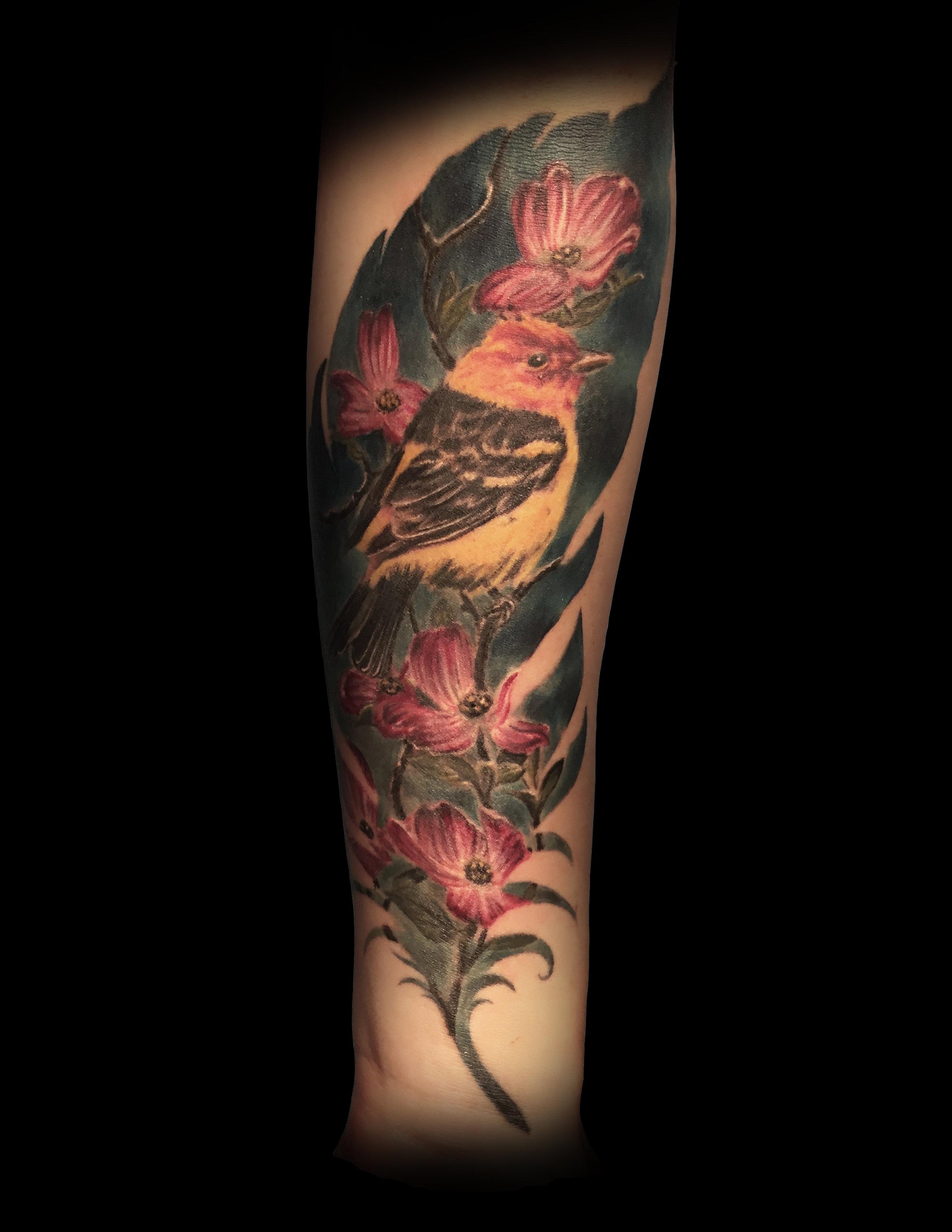 bird feather.jpg