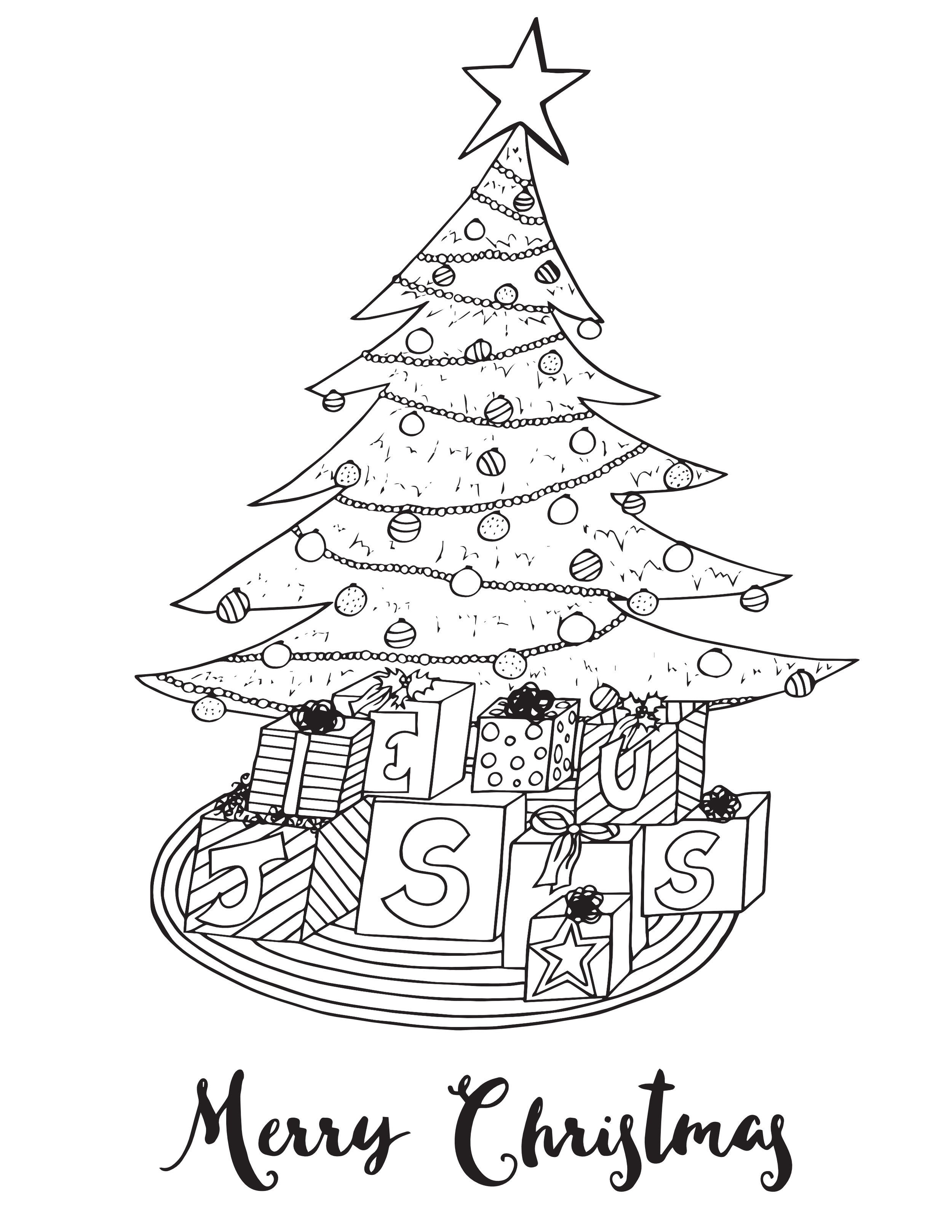 Merry Christmas .jpg