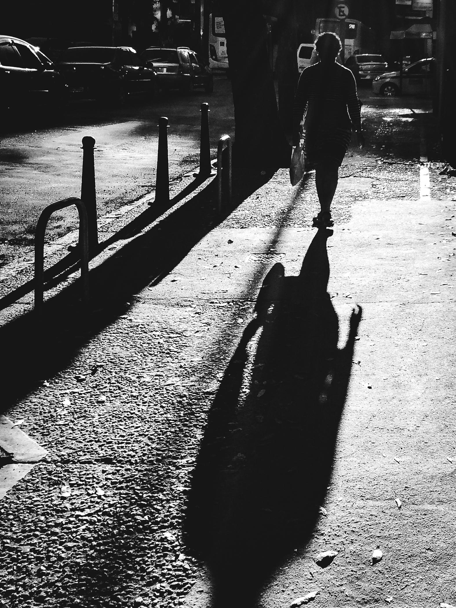 / Shadow on the road ahead