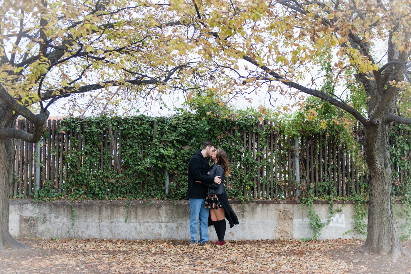A young couple kiss next to an ivy fence in Old Town Alexandria