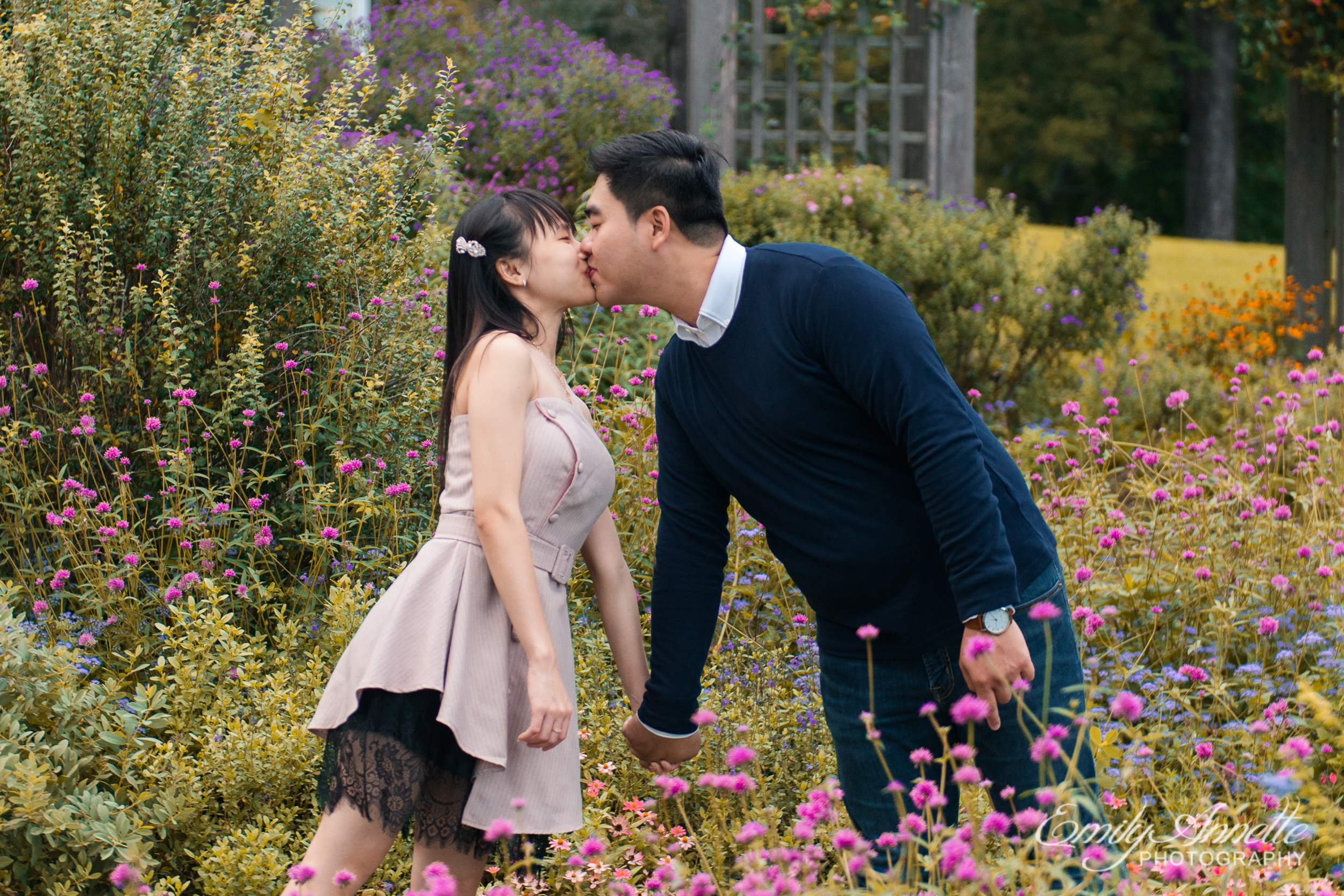 A young couple hold hands and kiss in the middle of the garden at Green Spring Gardens Park in Fairfax, Virginia