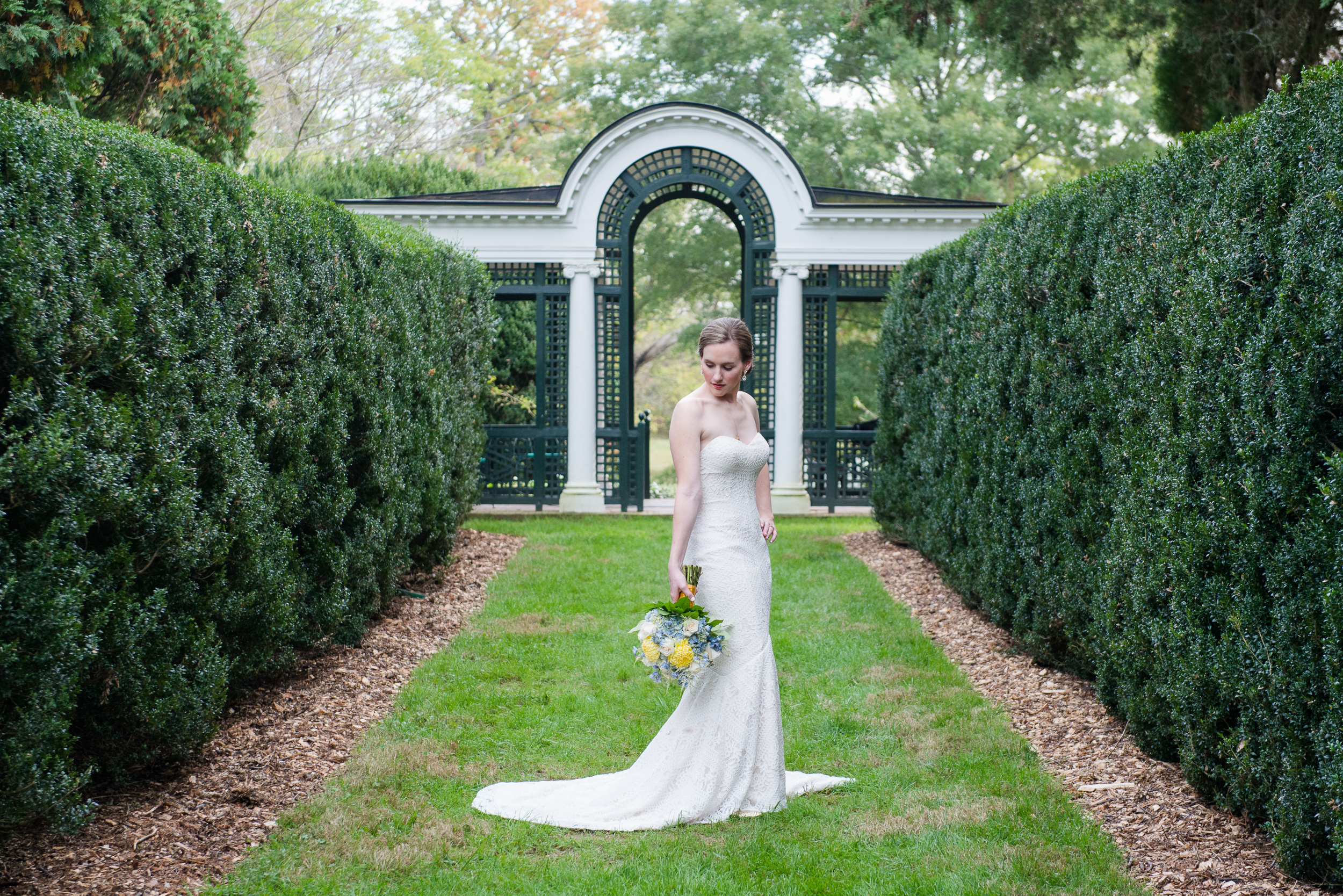 A bride in a romantic lace dress with spring blue and yellow flowers in the hedges of the garden at Oatlands Historic House and Gardens in Leesburg, Virginia
