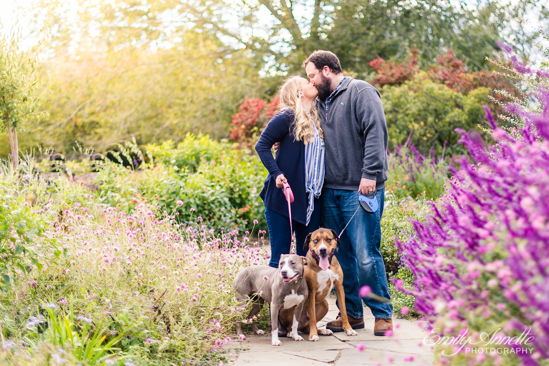 A couple kissing while holding their two dogs in the garden at Green Spring Gardens Park in Fairfax, Virginia