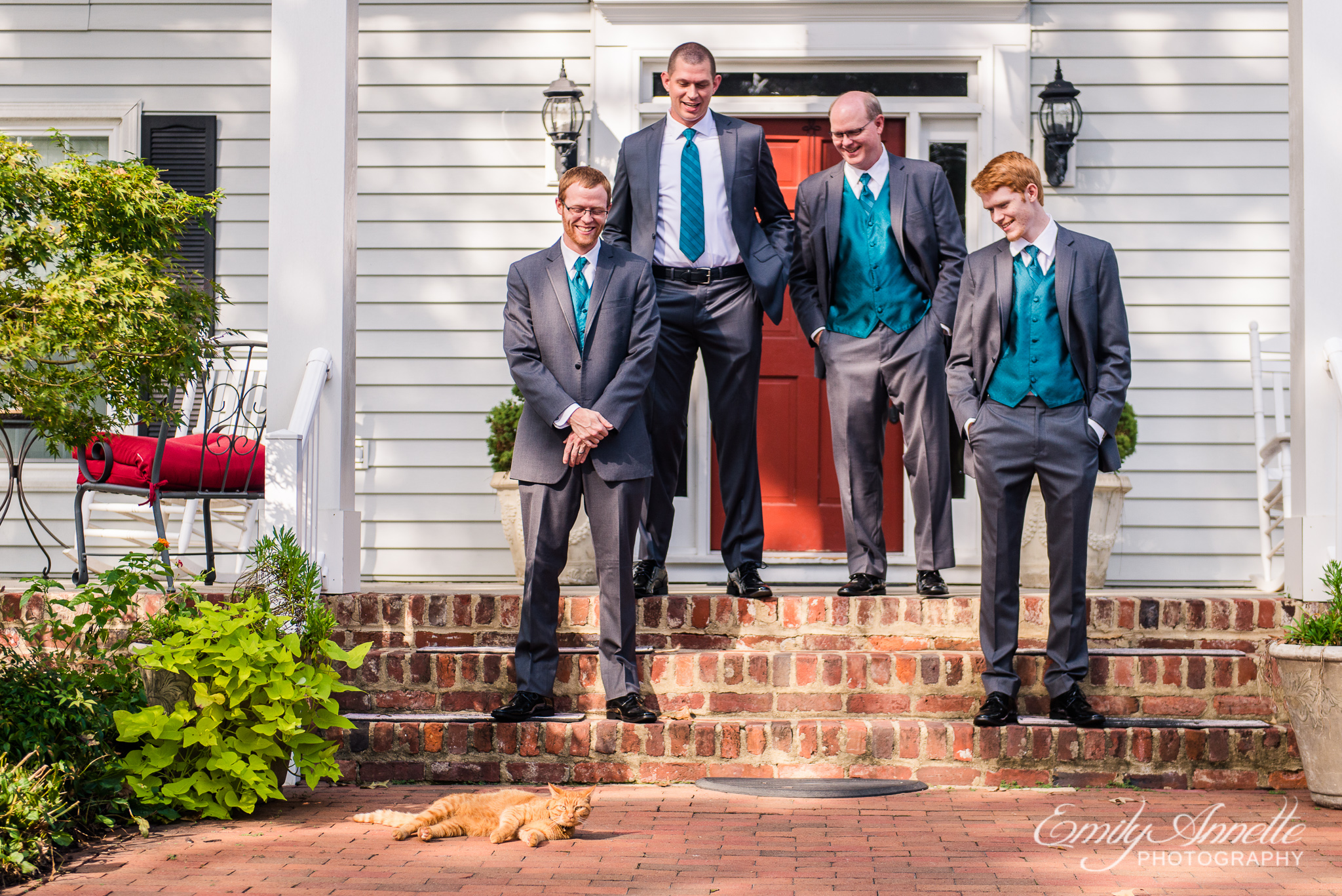 The groomsmen and groom pose with a cat on the front porch of a historic house during a country wedding at Amber Grove near Richmond, Virginia