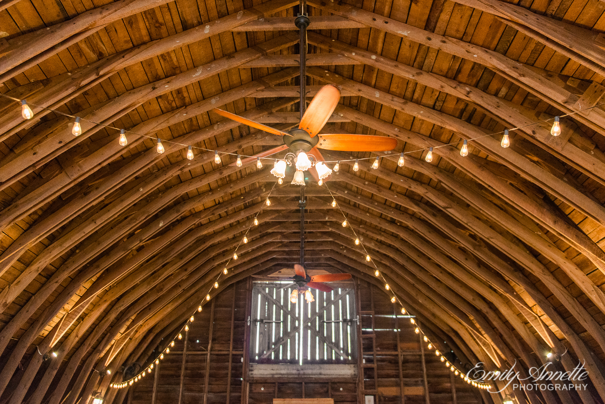 A barn decorated with string lights for a wedding ceremony during a country wedding at Amber Grove near Richmond, Virginia