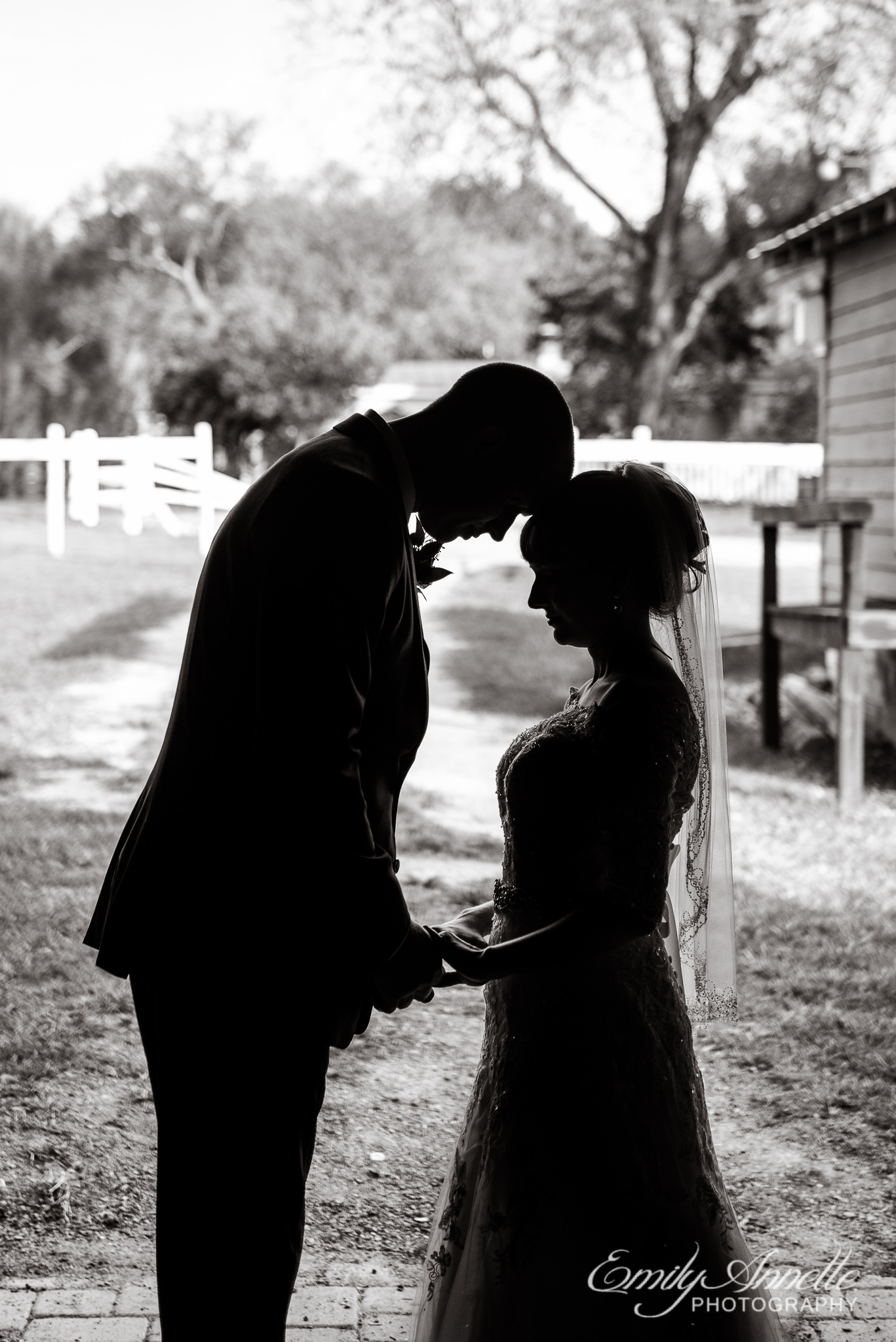 A silhouette of a bride and groom holding hands with foreheads together during their country wedding at Amber Grove near Richmond, Virginia