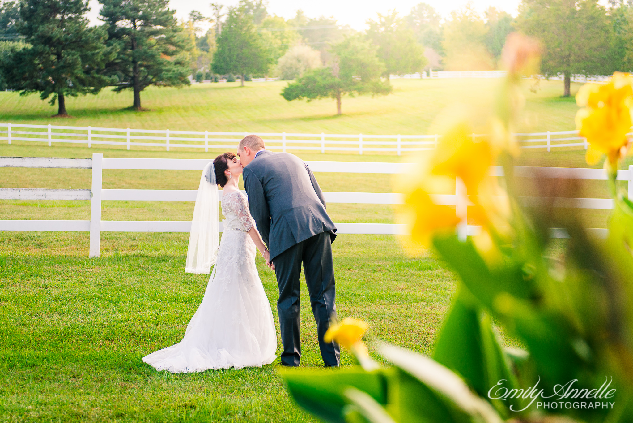 A bride and groom kiss at golden hour during their country wedding at Amber Grove near Richmond, Virginia