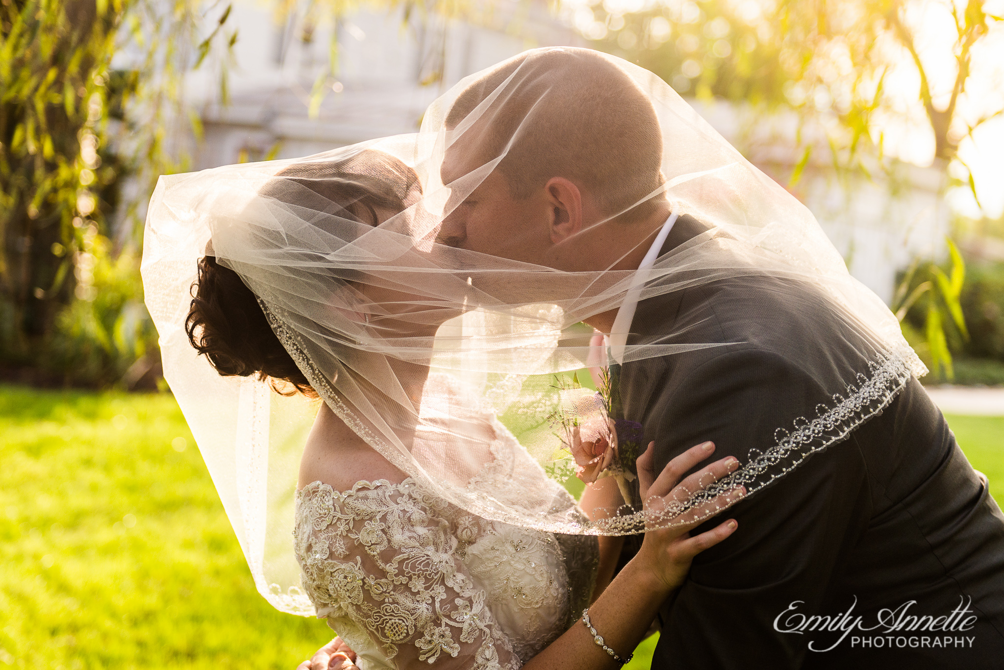 A bride and groom share a kiss under the bridal veil during golden hour after their country wedding at Amber Grove near Richmond, Virginia