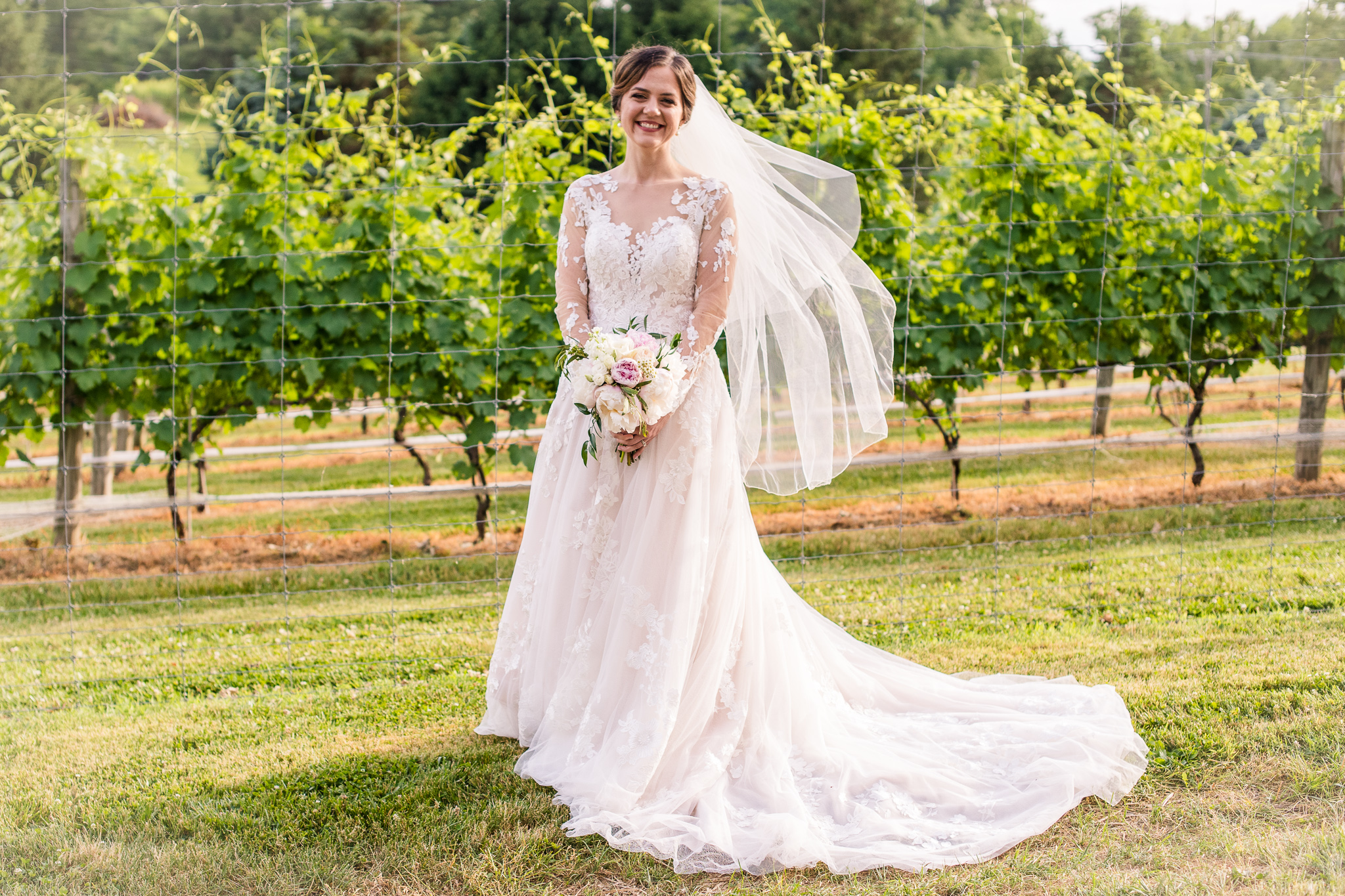 A classic bride in a modest lace wedding dress poses for a portrait in the vineyards at The Barns at Hamilton Station Vineyard in Leesburg, Northern Virginia
