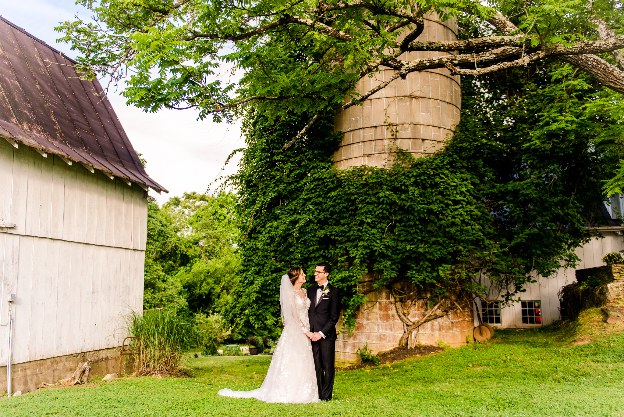 A bride and groom hold hands in front of a silo covered in greenery during golden hour at The Barns at Hamilton Station Vineyard in Leesburg, Northern Virginia