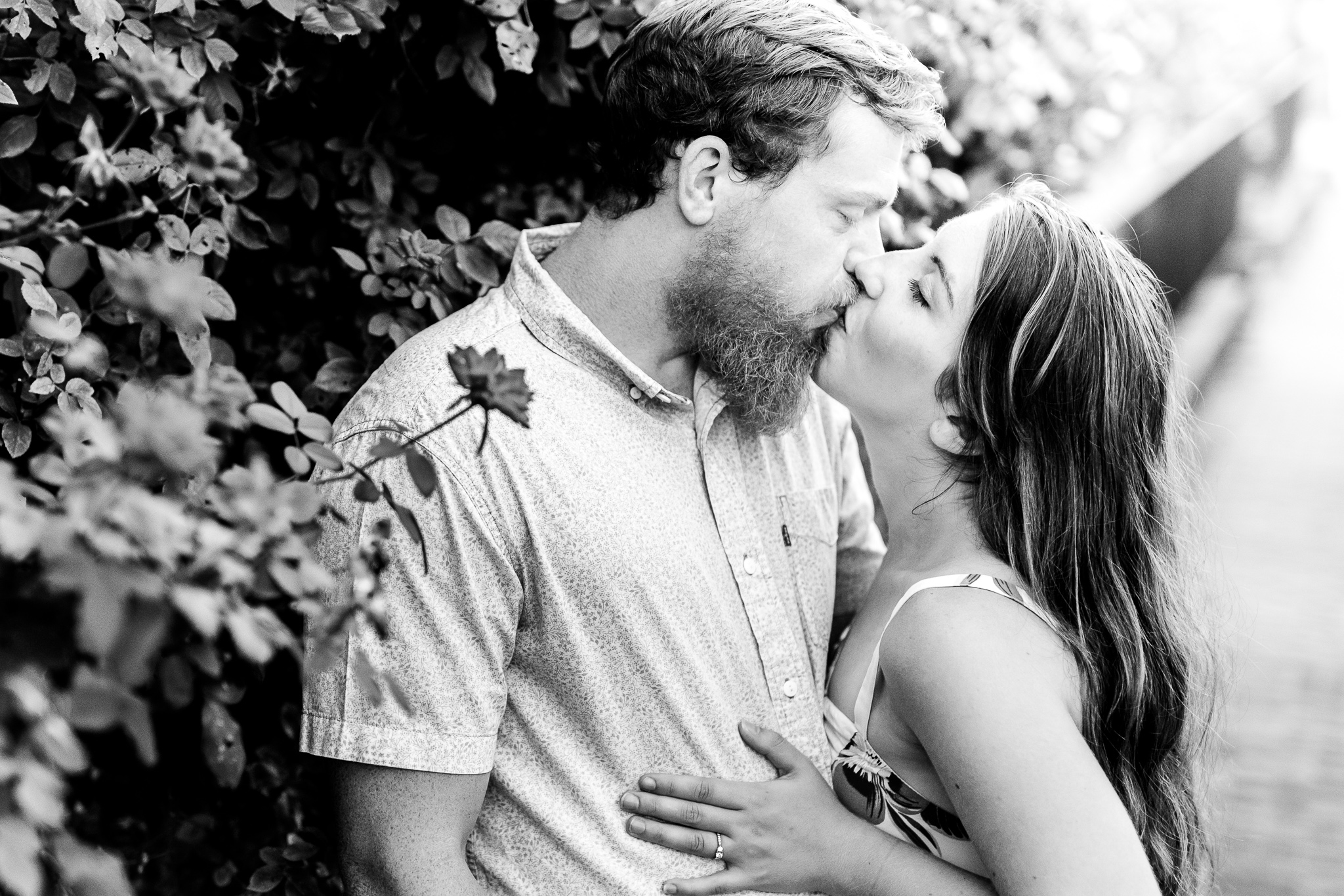 An engaged couple shares a kiss next to a rose bush during their summer sunset engagement session in Historic Occoquan, Northern Virginia