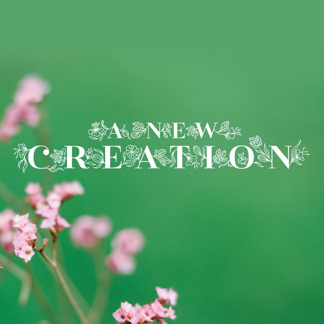 newcreation_socialmediagraphic_square.jpg