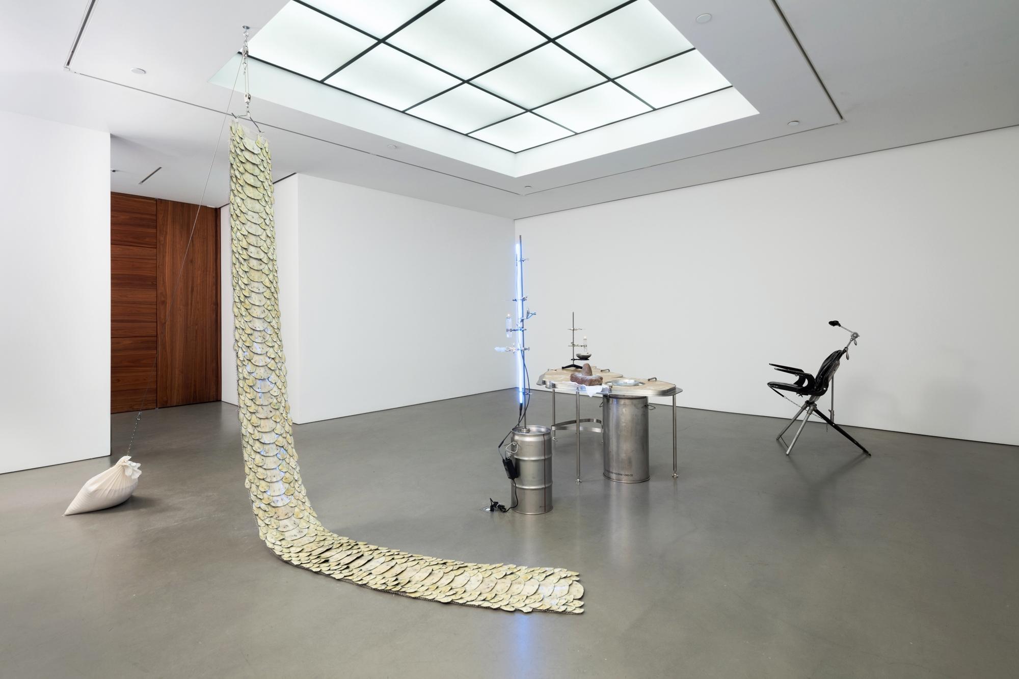 ELAINE CAMERON-WEIR Erotix Andrea Rosen Gallery (Gallery 2)