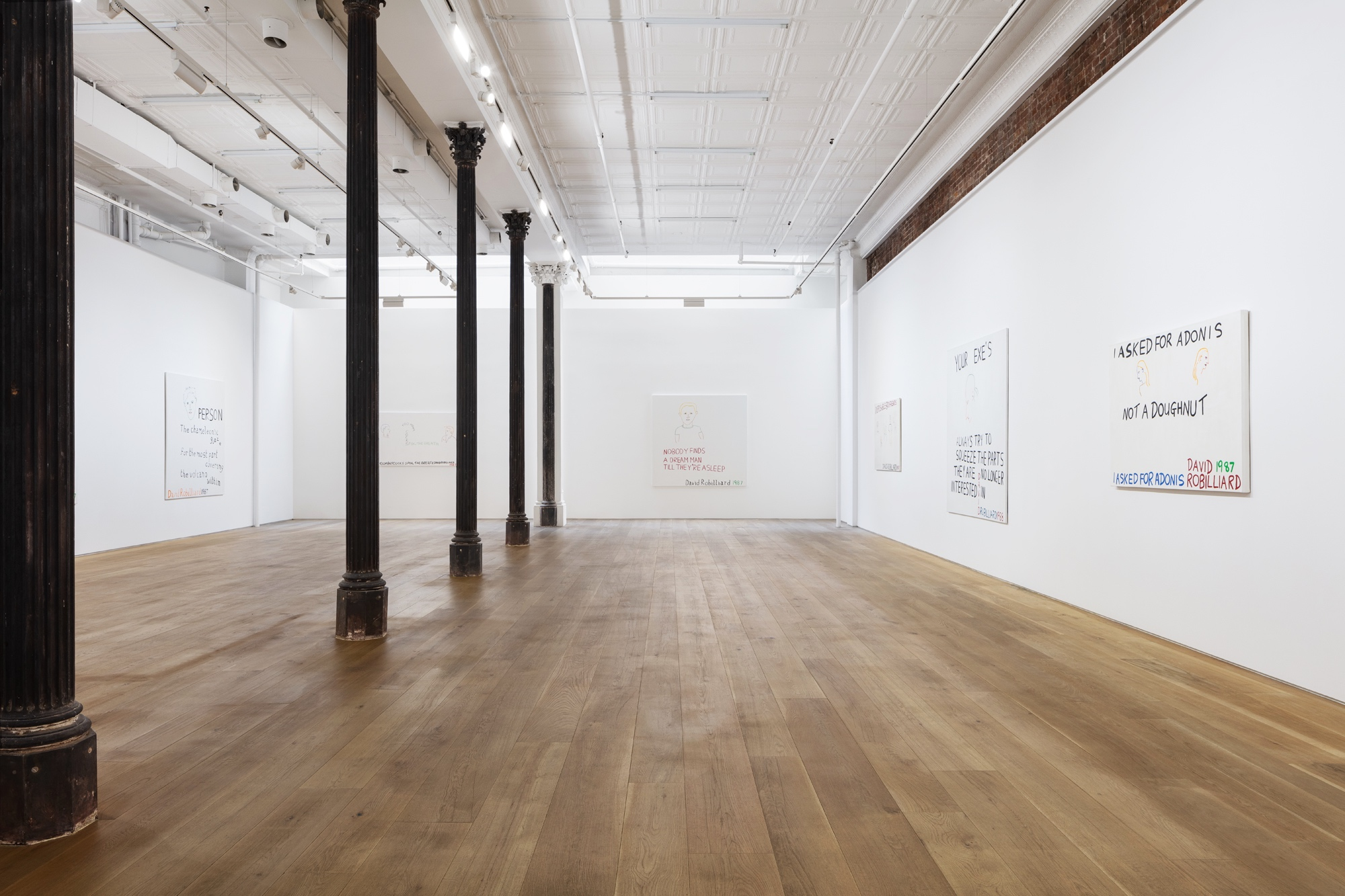 DAVID ROBILLIARD Works 1984-1988 Ortuzar Projects