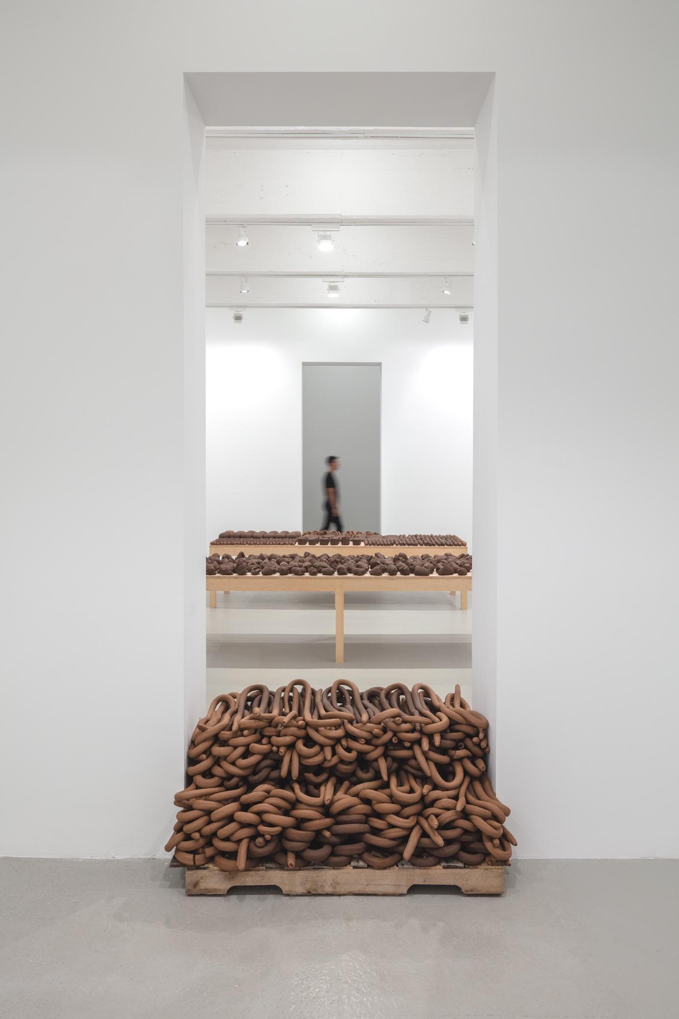 Art / Installations  ERRÂNCIA POÉTICA (POETIC WANDERINGS) Anna Maria Maiolino Hauser & Wirth