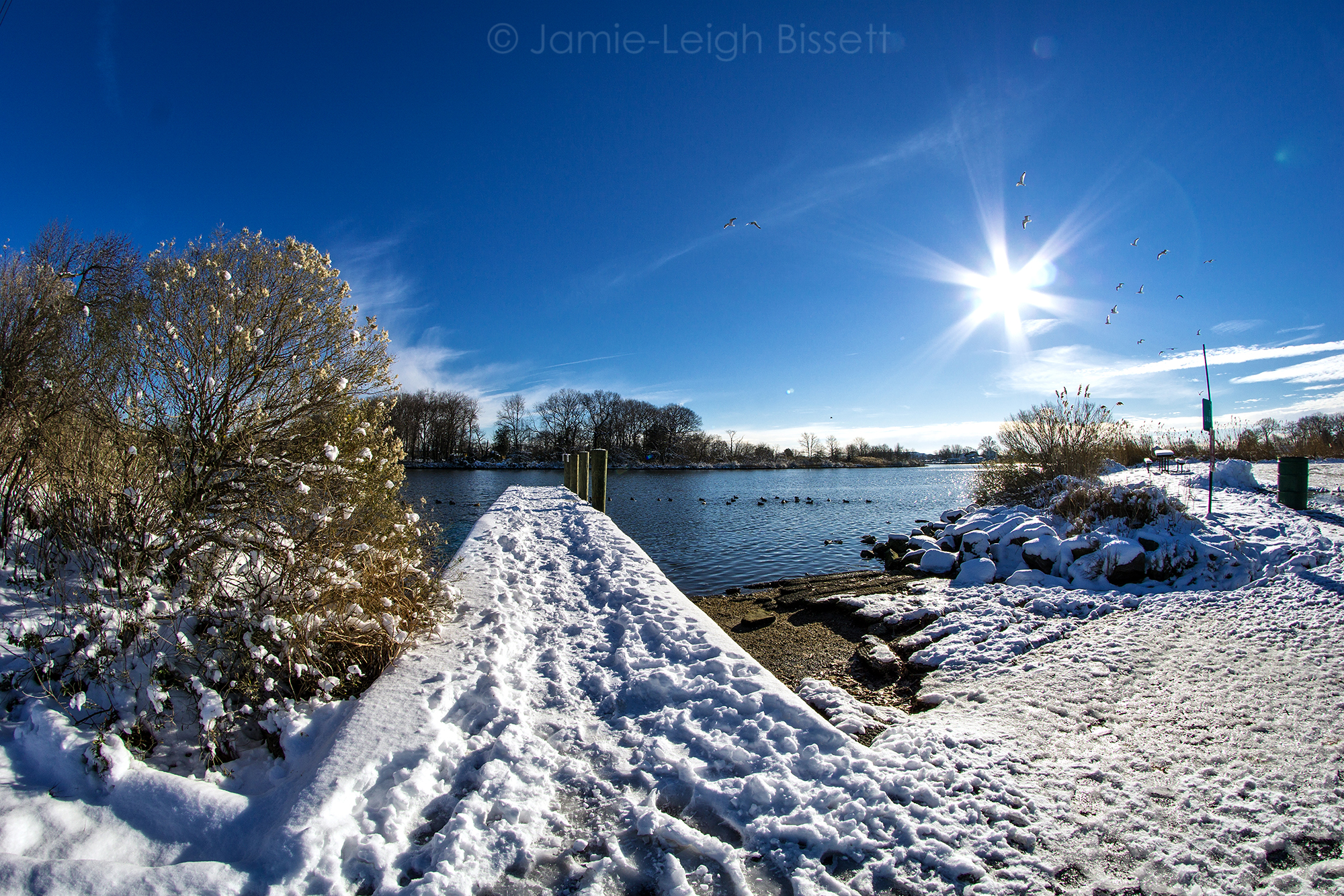 20190114 Merritt Point Park Snow Pics by Jamie-Leigh Bissett 001.jpg