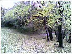 St Nicholas Park.jpg