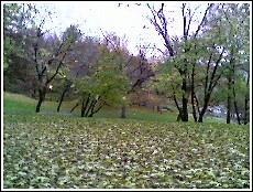 St Nicholas Park2.jpg