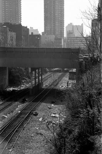 Harlem 1995-2.jpg