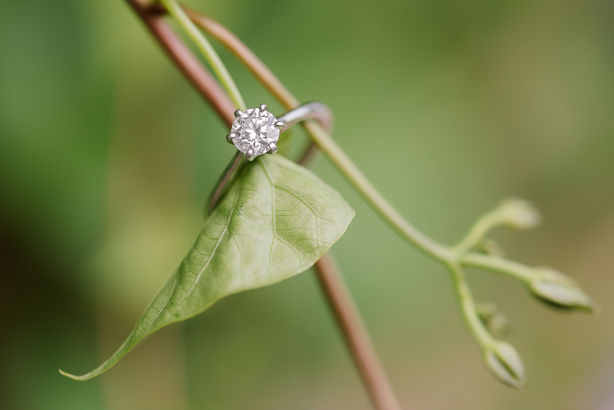 Maryland-Howard-County-Conservancy-Engagement-Session-14.jpg