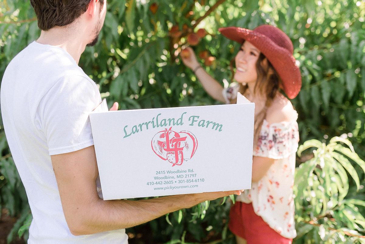 MD-Engagement-Larriland-Farm-Fruit-Picking-34.jpg