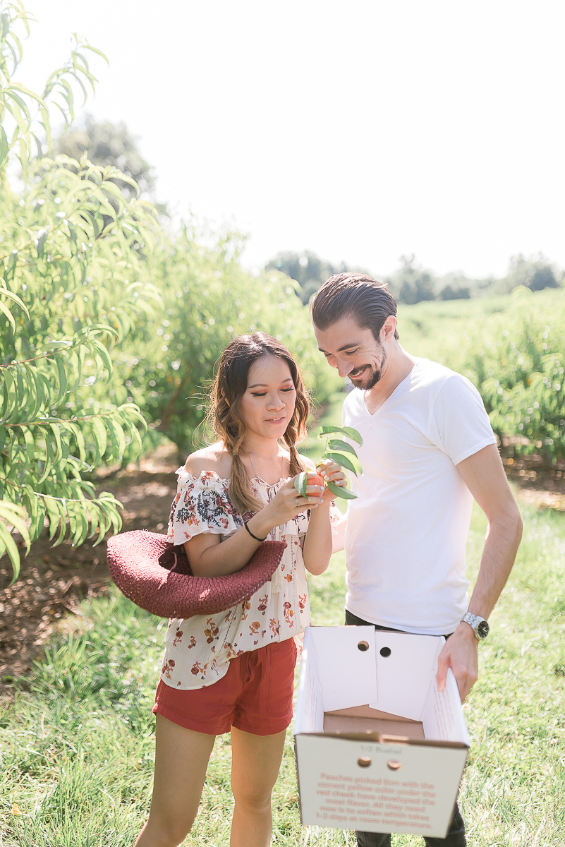 MD-Engagement-Larriland-Farm-Fruit-Picking-30.jpg