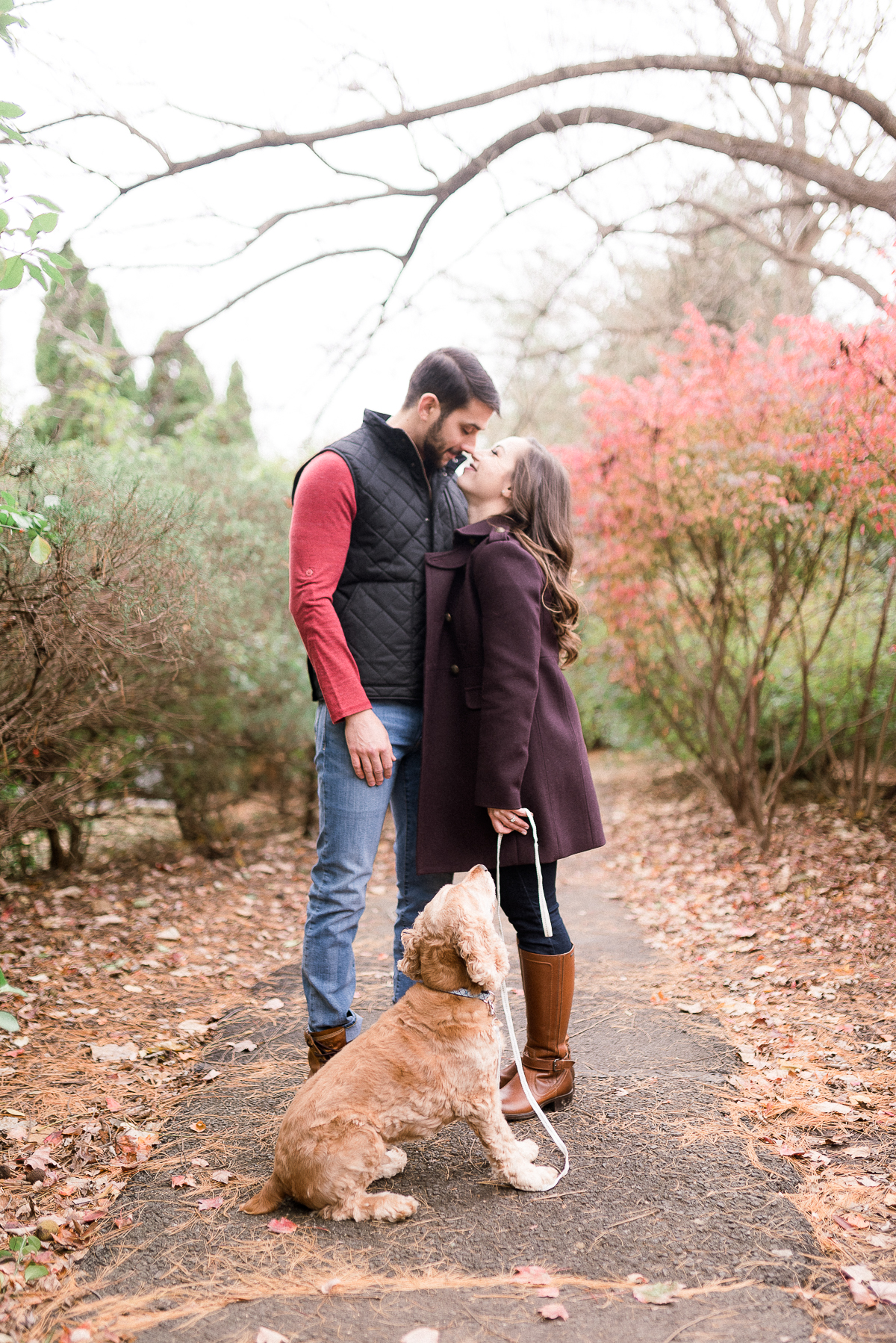 MD-Great-Falls-Engagement-Session-With-Dog-Fall-Foliage-35.jpg