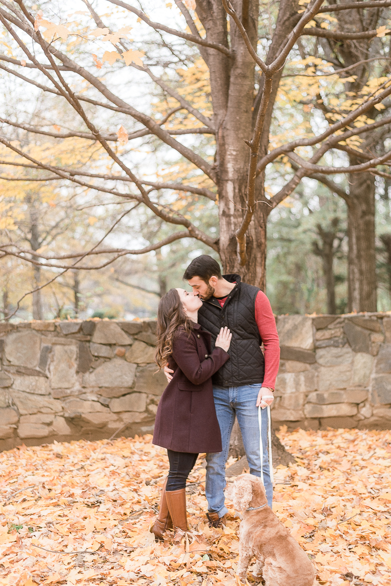 MD-Great-Falls-Engagement-Session-With-Dog-Fall-Foliage-13.jpg