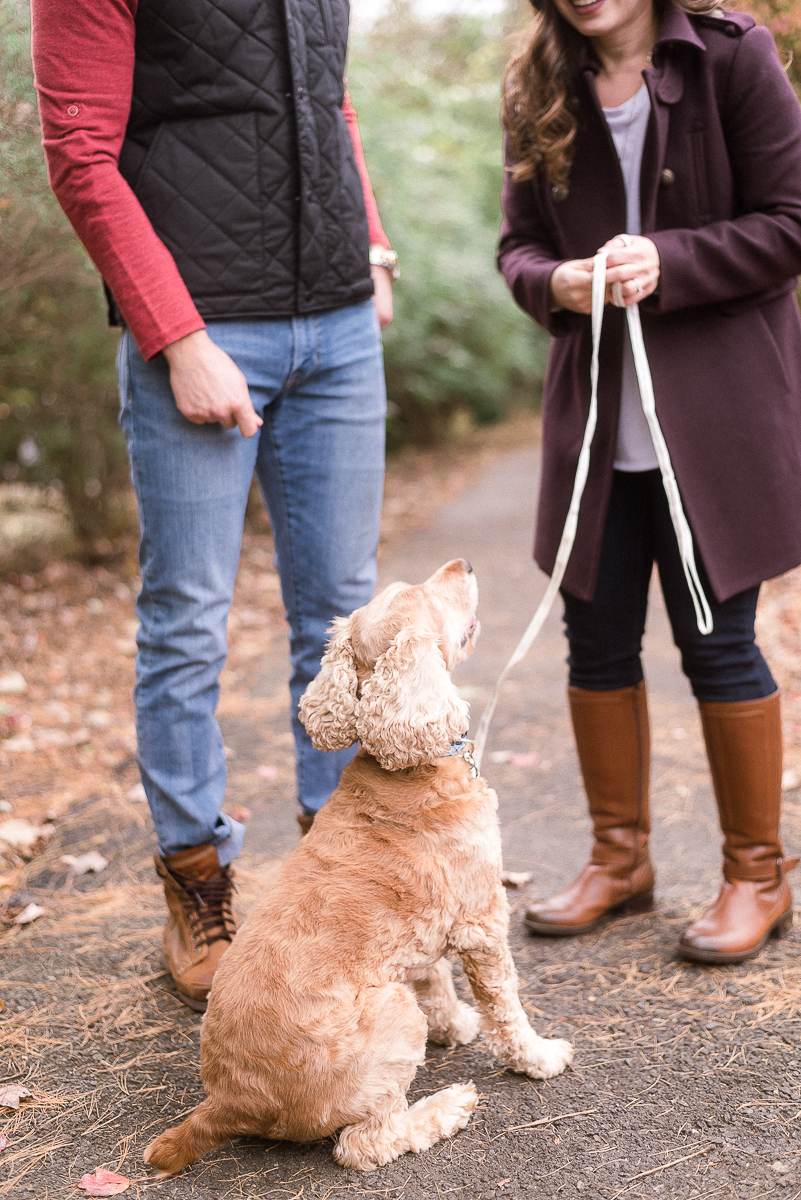 MD-Great-Falls-Engagement-Session-With-Dog-Fall-Foliage-6.jpg