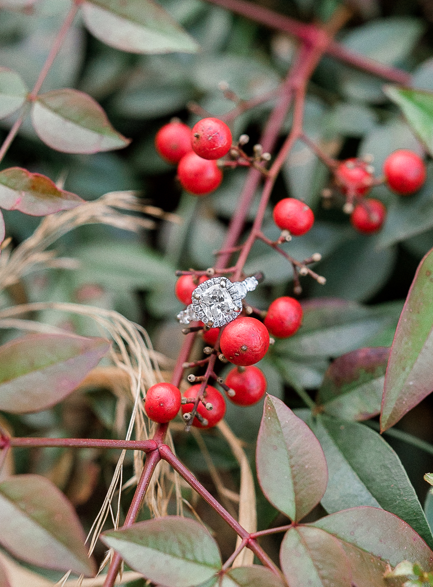 MD-Engagement-Brookside-Garden-Winter-Sunset-Session-29.jpg