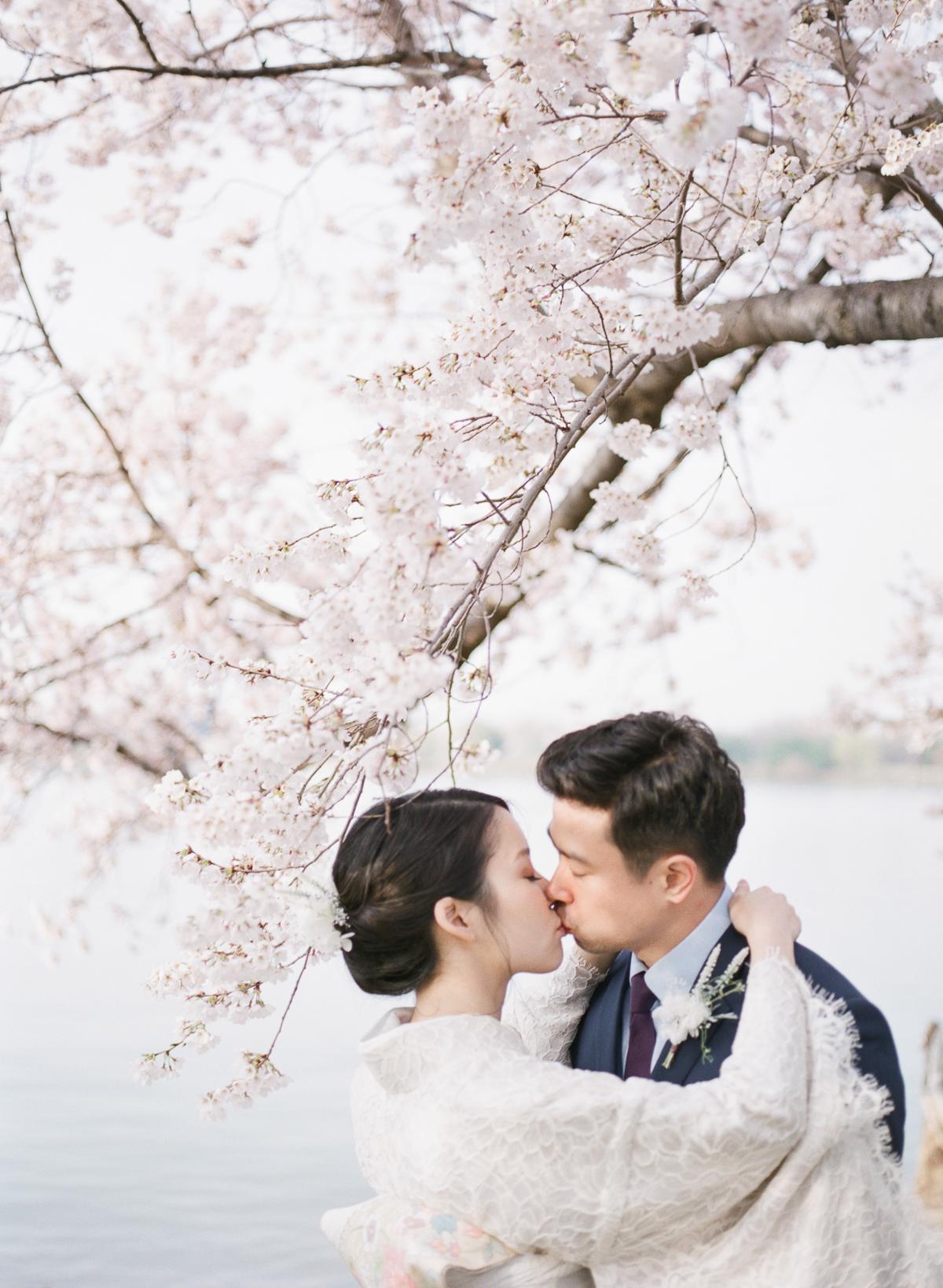 DC-Engagement-Cherry-Blossom-Tidal-Basin-3.jpg