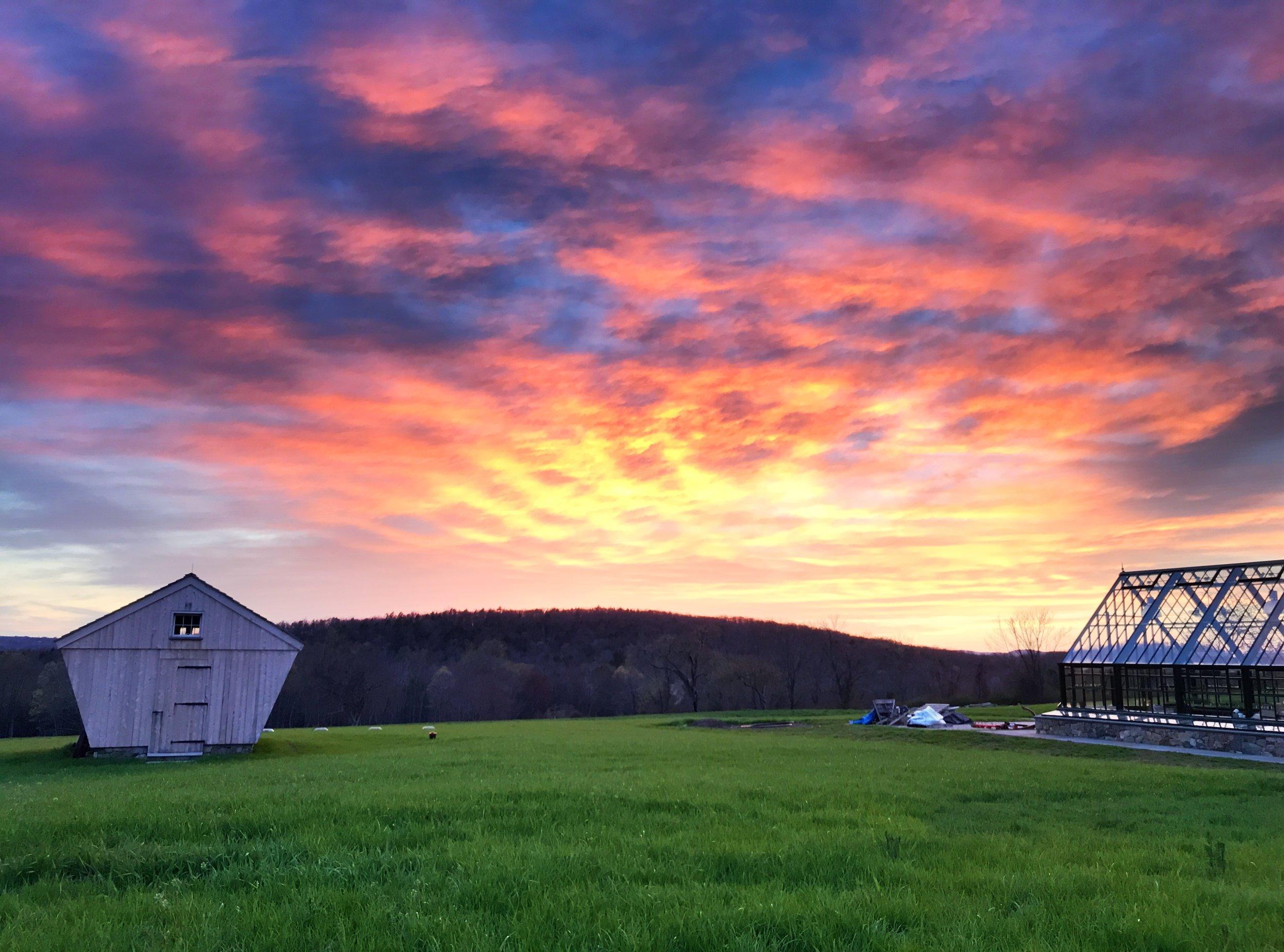 Sunny Meadow Farm