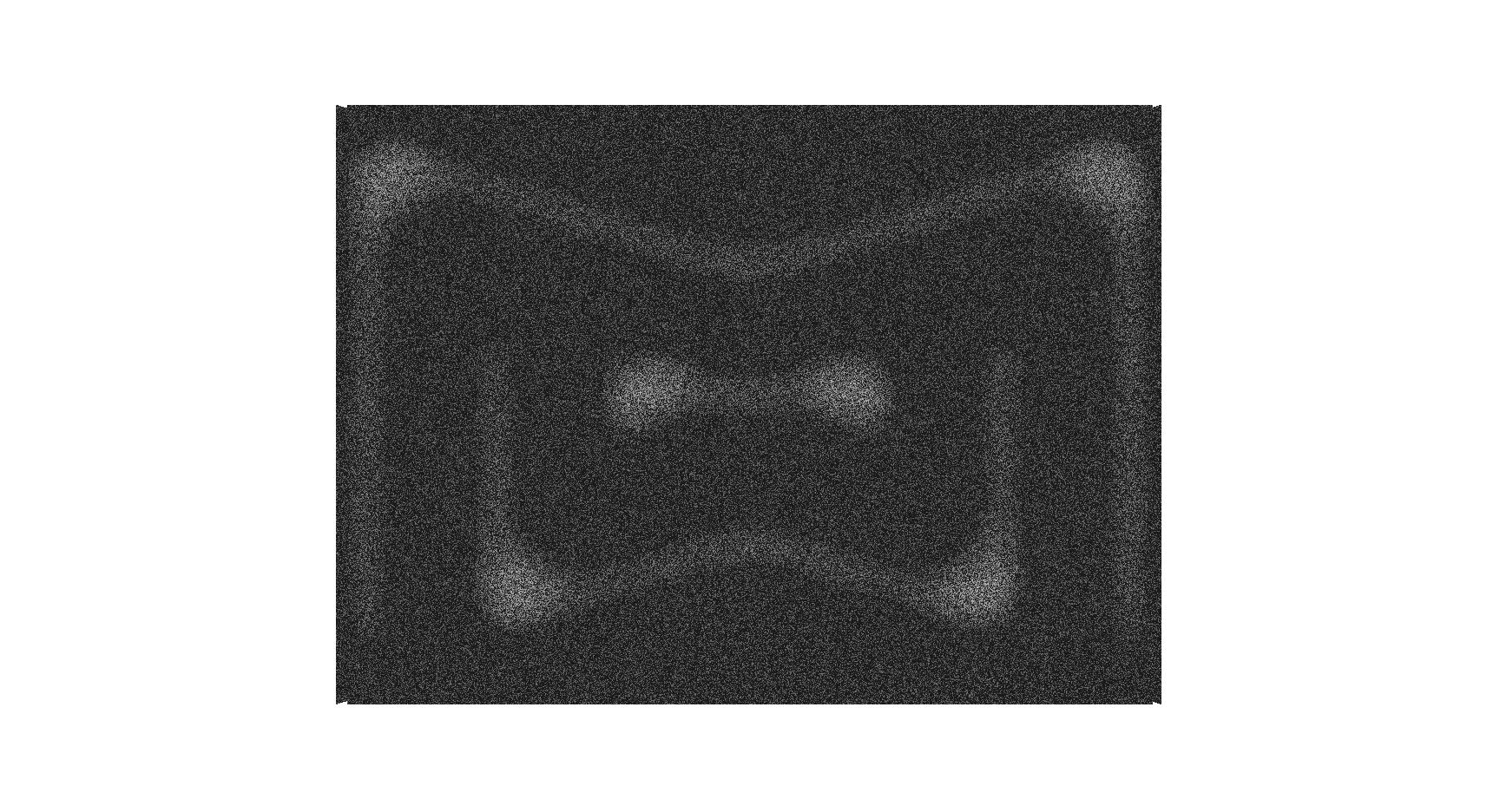 Madison Wells - Dark Trans.png
