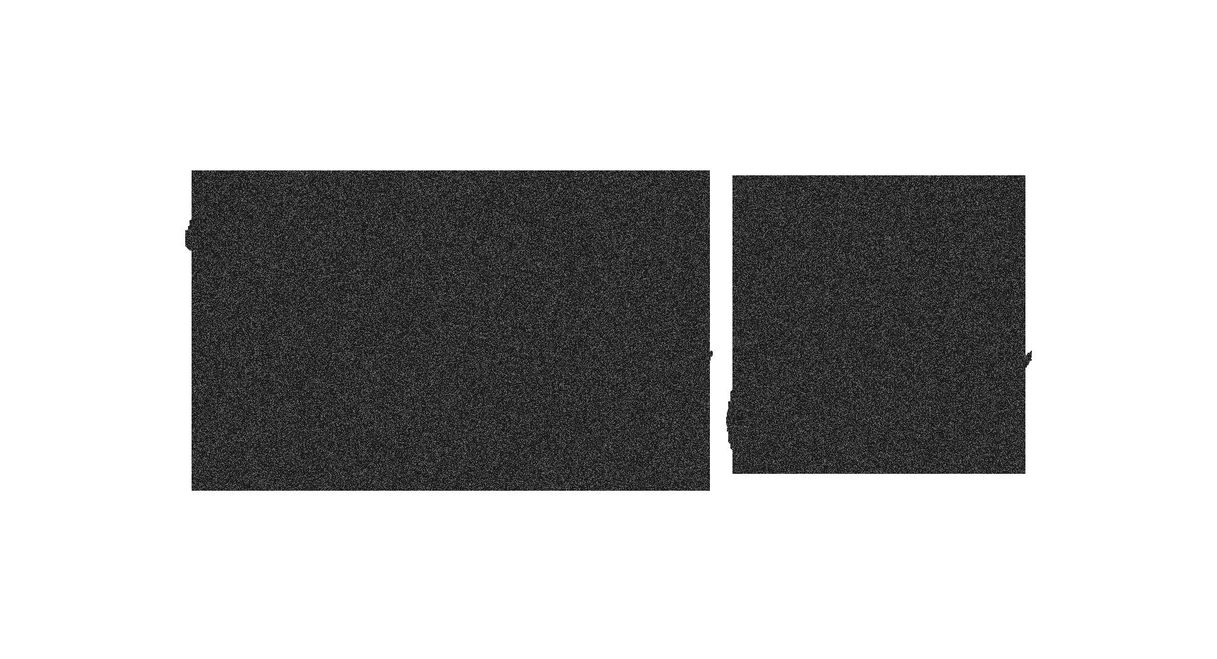 Katie Lee - Dark Trans.png