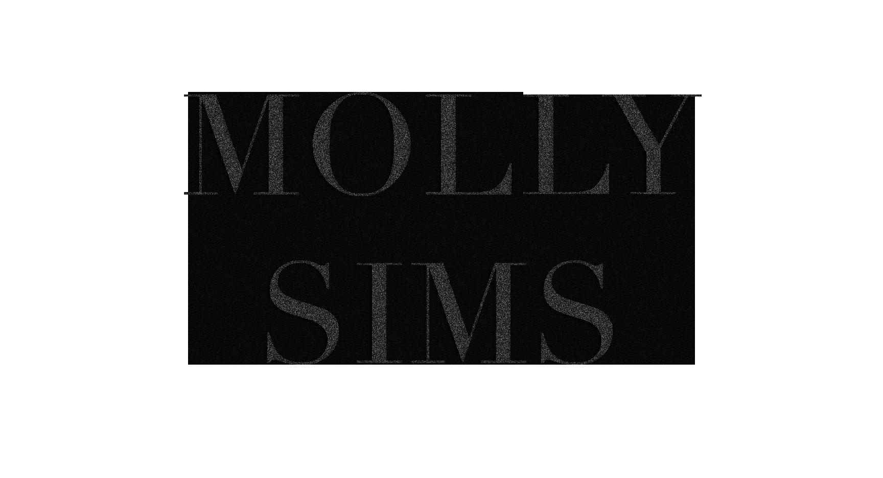 Molly Sims - Logo - Dark Trans.png
