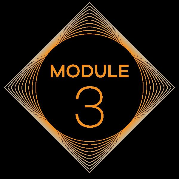 Module_3.png