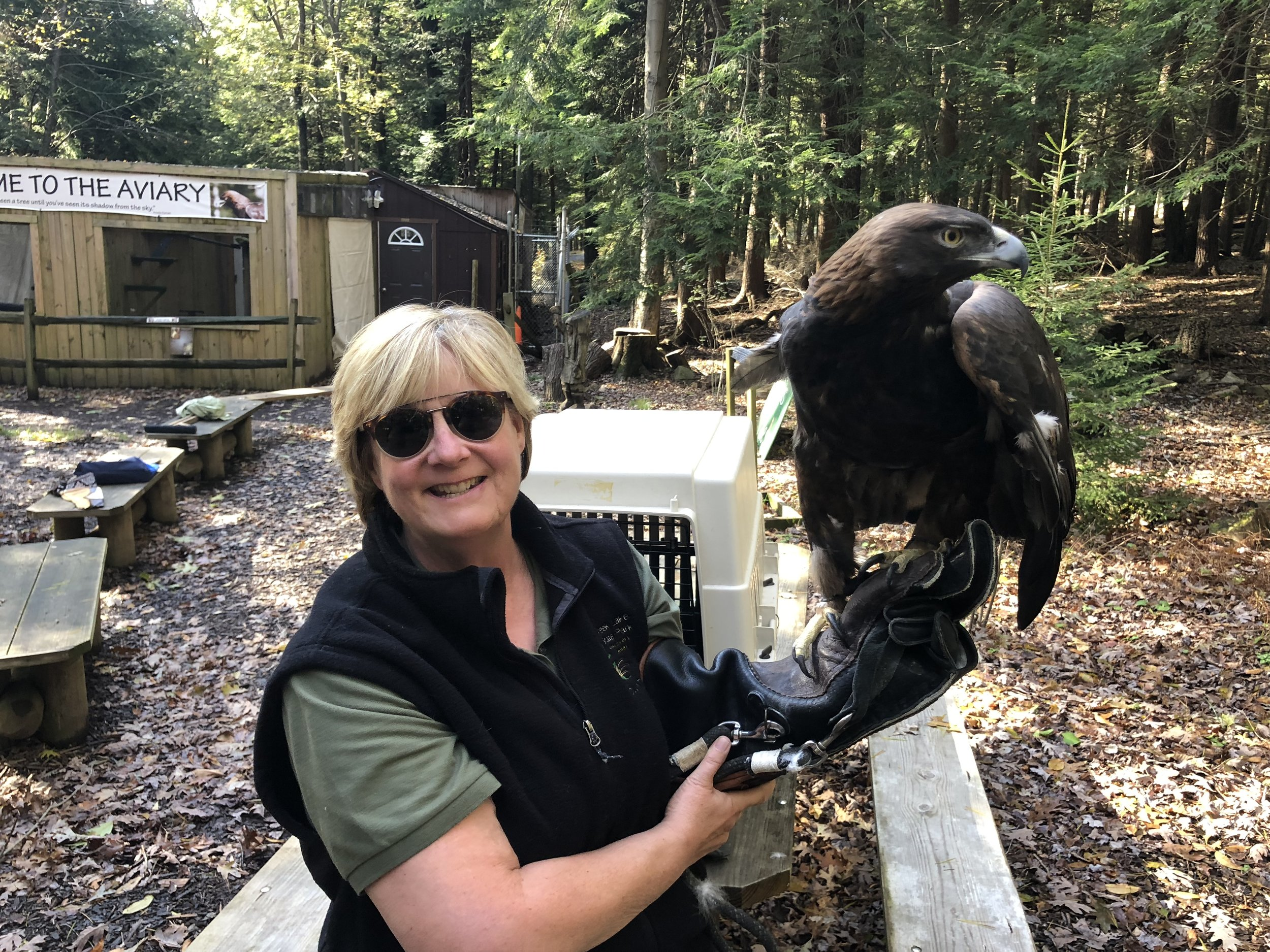 Volunteer Barb Bailey holding our Golden Eagle