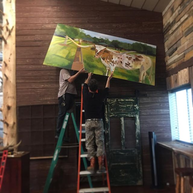 #installed #texan #longhorn #petportrait
