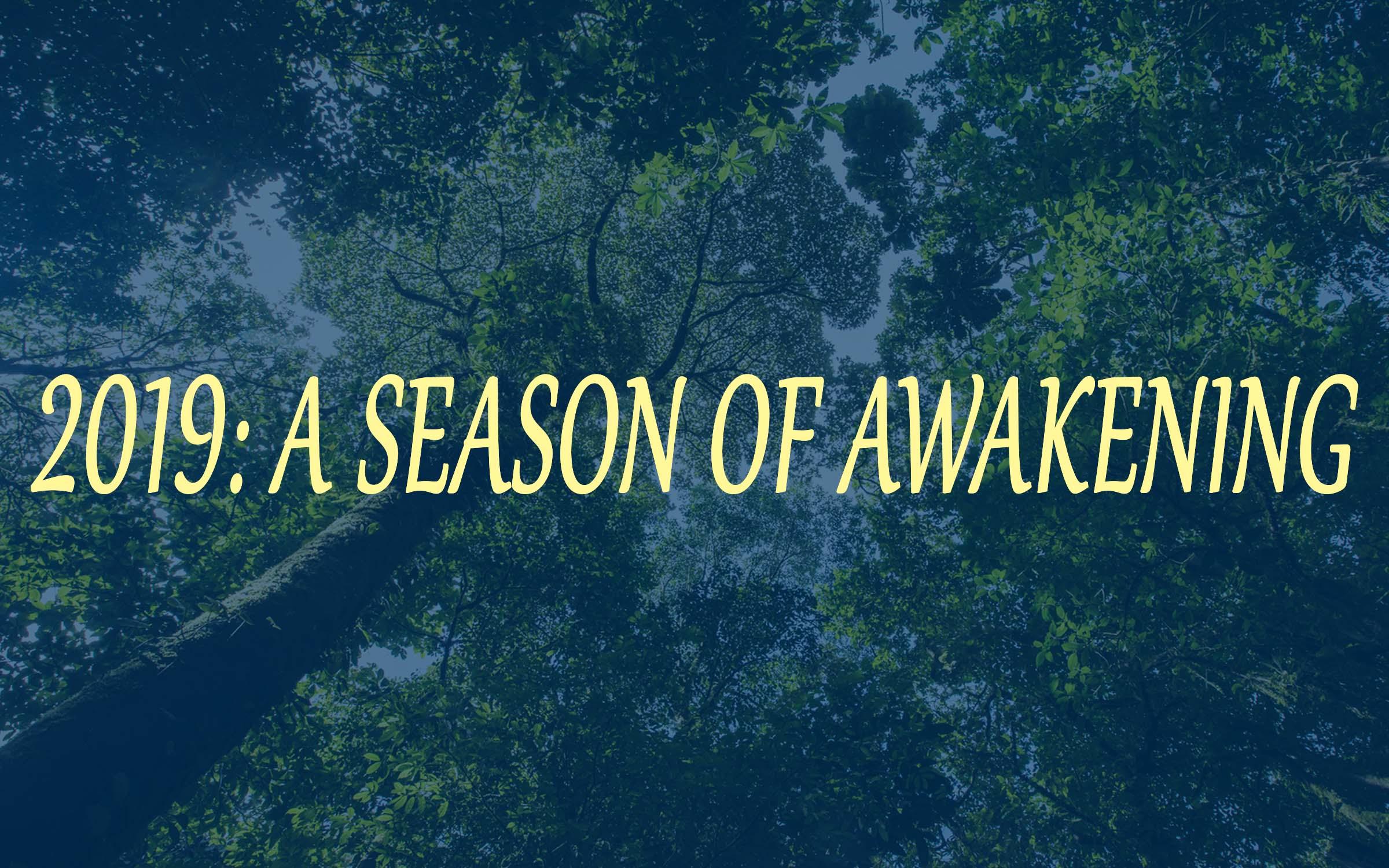 Season of Awakening.jpg
