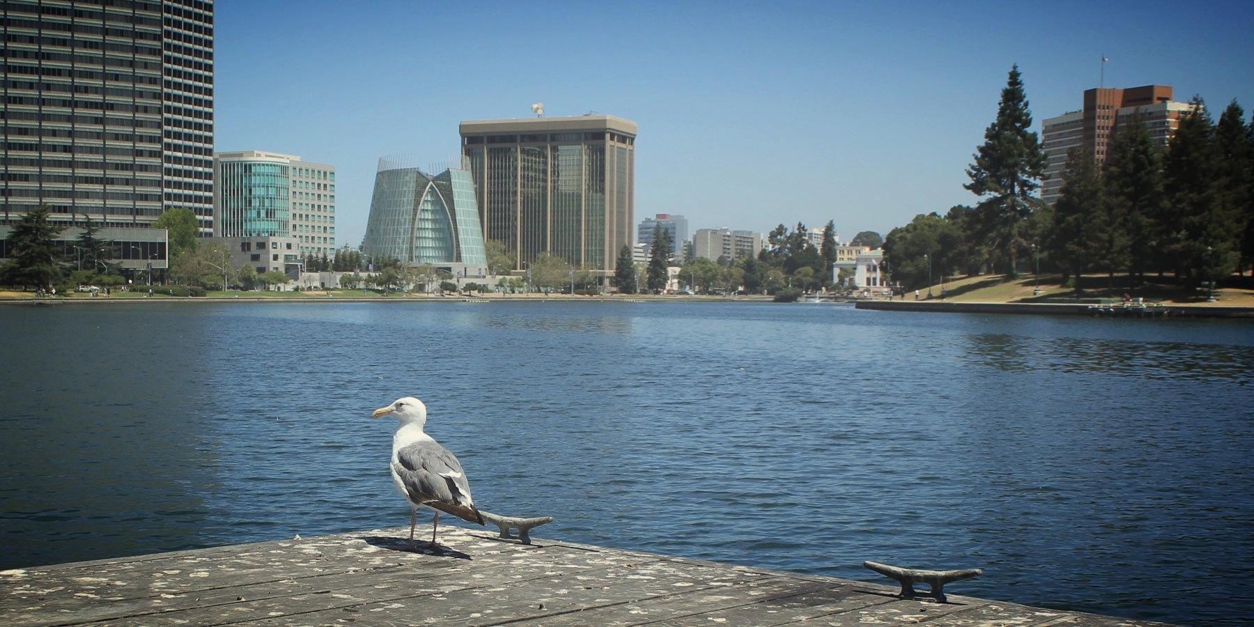 Oakland -