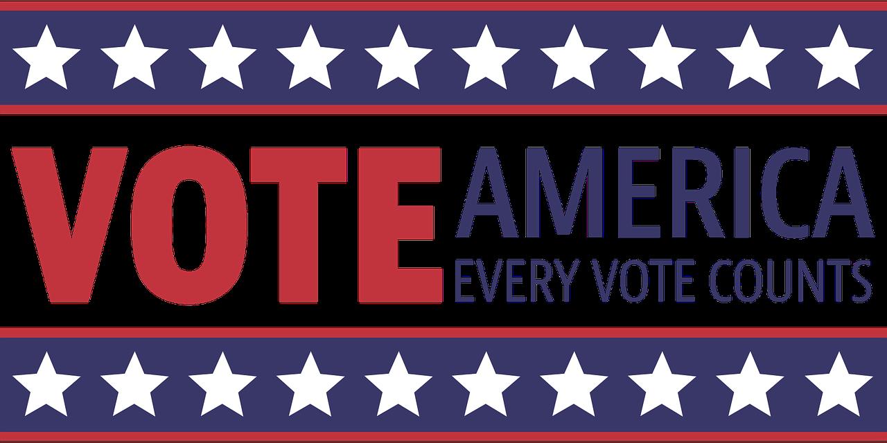Midterm Election Vote Immigration Ibrahim Law Office LLC