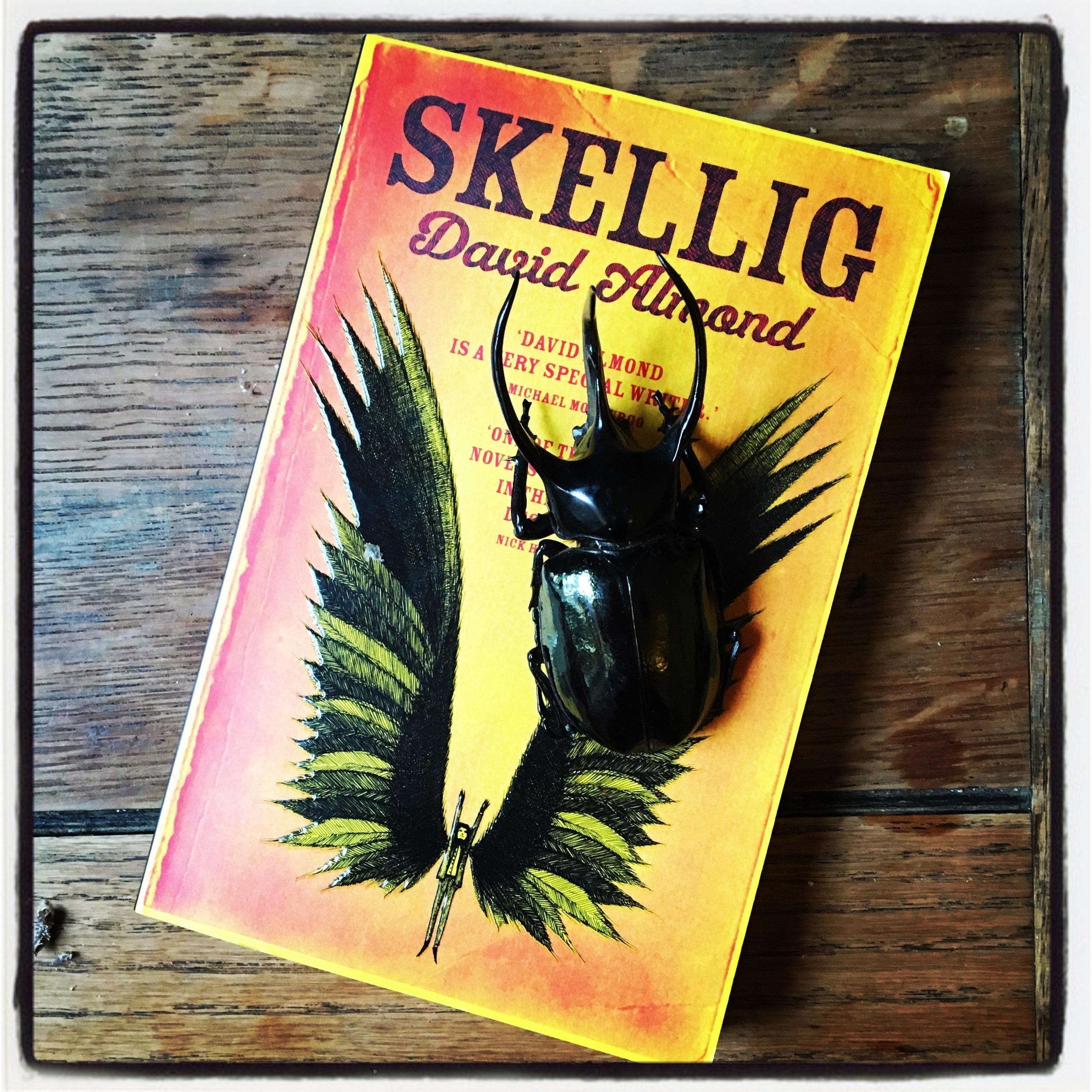 Skellig by David Arnold