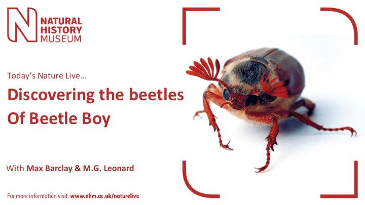 BeetleBoy_NHM.jpg
