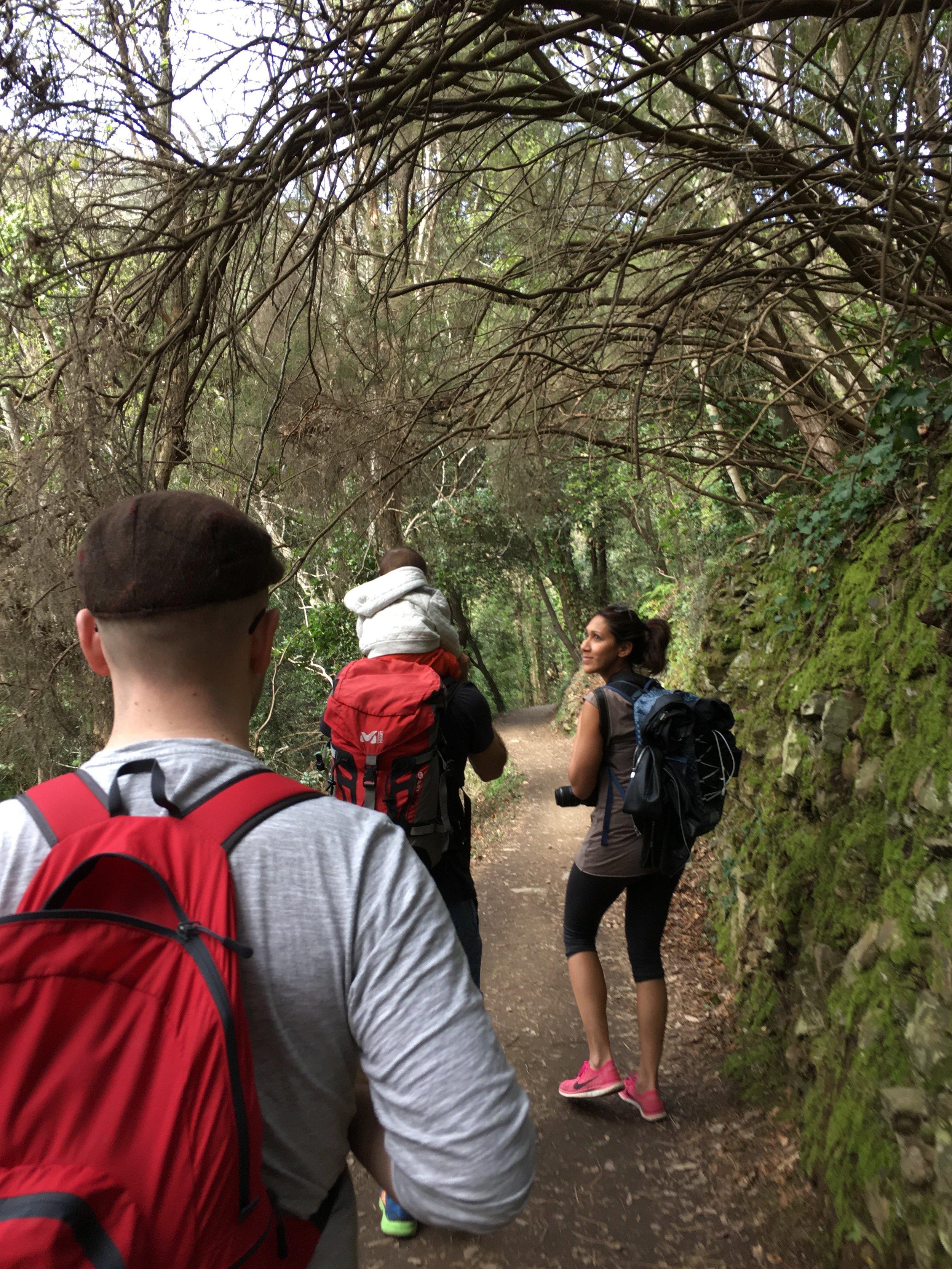 A hiking track around Cinque Terre